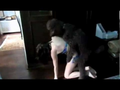 Geiler Hund poppt sexy Bikini Girl