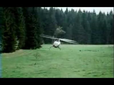 Verrückter Hubschrauber Pilot durch Wald im extremen Tiefflug